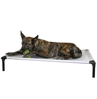 Starmark Dog Zone Pro-Training Bed 3 str.